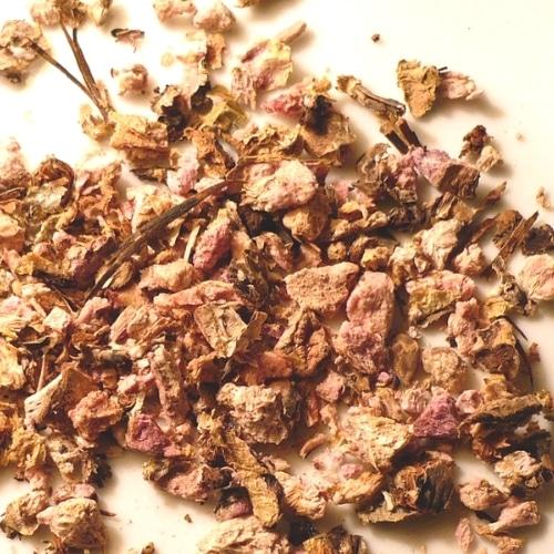 rhodiola rosea dried